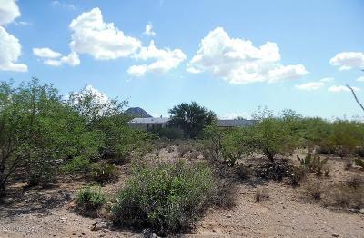 Catalina, Corona De Tucson, Green Valley, Marana, Oro Valley, Sahuarita, South Tucson, Tucson, Vail Manufactured Home For Sale: 3861 S Donald Avenue
