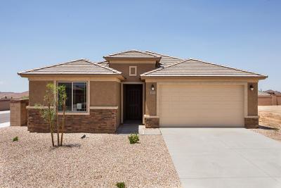 Tucson Single Family Home For Sale: 11953 N Renoir Way