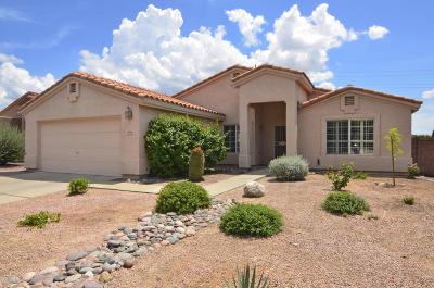 Tucson Single Family Home For Sale: 1049 W Eagle Look Lane