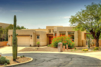 Tucson Single Family Home For Sale: 6522 E Mountain Shadows Place