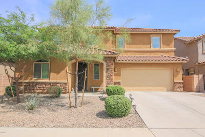 Tucson Single Family Home For Sale: 6384 W Smoky Falls Way