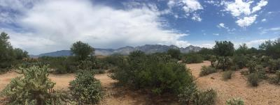 Tucson Residential Lots & Land For Sale: 12496 N La Canada (6.6 Acres) Drive