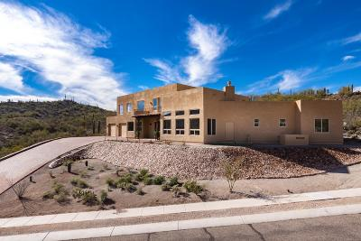 Tucson Single Family Home For Sale: 3189 W Tumamoc Drive
