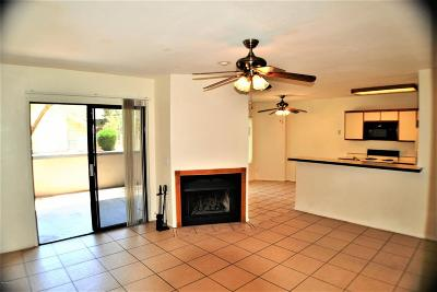 Tucson Condo For Sale: 1689 W Wood Bridge Court