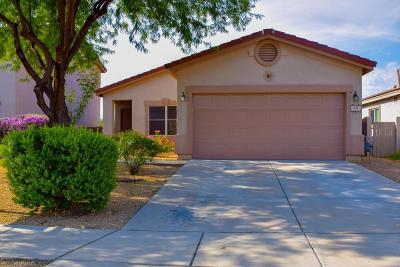 Sahuarita Single Family Home Active Contingent: 310 E Mountain Alder Street