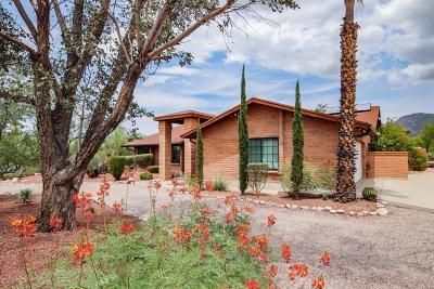 Tucson Single Family Home For Sale: 1601 E Paseo Pavon