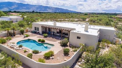 Tucson Single Family Home For Sale: 890 N Tanque Verde Loop Road