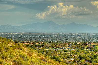 Tucson Residential Lots & Land Active Contingent: 7100 N Cathedral Rock Place #87