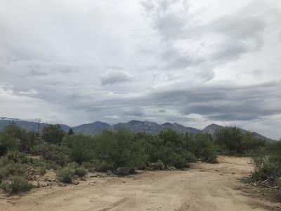 Residential Lots & Land For Sale: 1845 W Limewood Drive