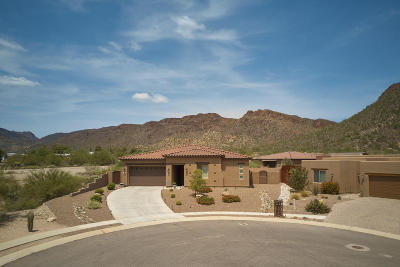 Tucson Single Family Home For Sale: 2929 S Pitchfork Court