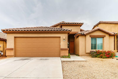 Sahuarita Single Family Home Active Contingent: 219 W Calle Patio Lindo