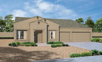 Tucson Single Family Home For Sale: 13265 W Finger Aloe Street
