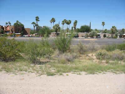 Tucson Residential Lots & Land Active Contingent: N Oracle Road #1