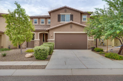 Sahuarita Single Family Home For Sale: 867 W Calle Ocarina