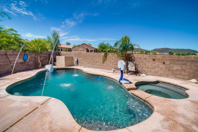 Tucson Single Family Home For Sale: 7502 W Briner Drive