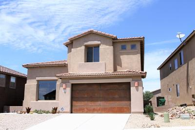 Vail Single Family Home For Sale: 10471 S Cutting Horse Drive
