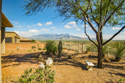 Green Valley Single Family Home Active Contingent: 2049 W Cactus Run Drive