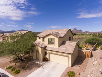 Tucson Single Family Home Active Contingent: 8431 N Douglas Fir Drive