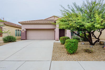 Single Family Home Active Contingent: 12529 E Rust Canyon Place