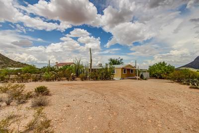 Pima County, Pinal County Manufactured Home For Sale: 6664 N Desert View Drive