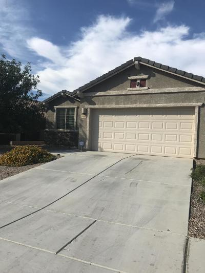 Vail Single Family Home Active Contingent: 10451 S Cutting Horse Drive
