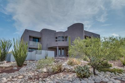 Tucson Single Family Home For Sale: 6733 E Snyder Road