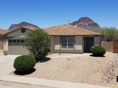 Tucson Single Family Home Active Contingent: 3539 S Desert Echo Road
