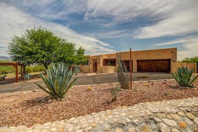 Tucson Single Family Home For Sale: 1040 N Tanque Verde Loop Road