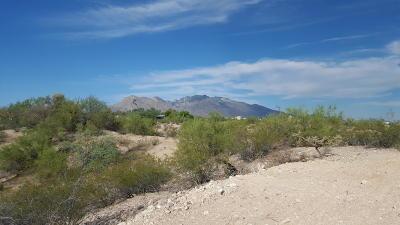 Tucson Residential Lots & Land For Sale: 6080 N Mona Lisa Road