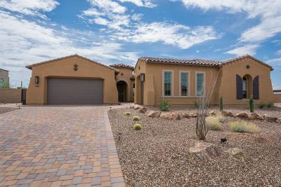 Marana Single Family Home For Sale: 14010 N Speckled Burro Lane