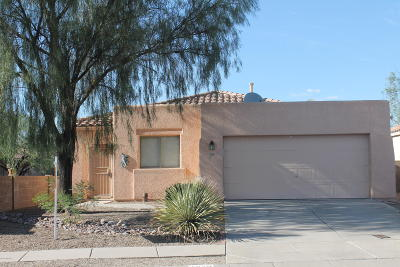 Tucson Single Family Home For Sale: 1830 W Waterleaf Drive