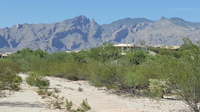 Tucson Residential Lots & Land Active Contingent: Vacant Land