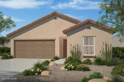 Vail Single Family Home For Sale: 10827 E Painted Mesa Place
