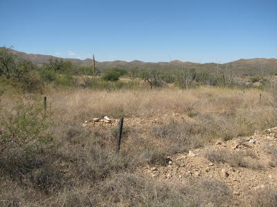 Residential Lots & Land For Sale: 19125 S Sonoita Highway