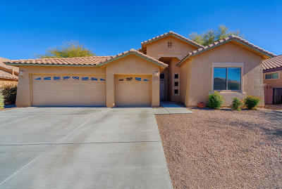 Sahuarita Single Family Home For Sale: 286 N Oak Tree Canyon Loop