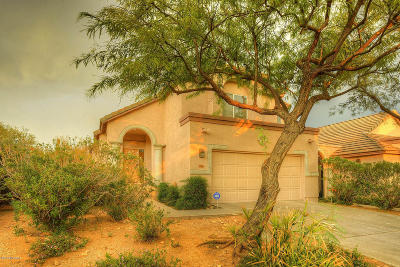 Tucson Single Family Home For Sale: 4044 E Via Del Vireo