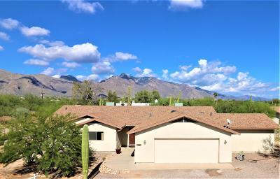 Tucson Single Family Home For Sale: 209 E Rudasill Road