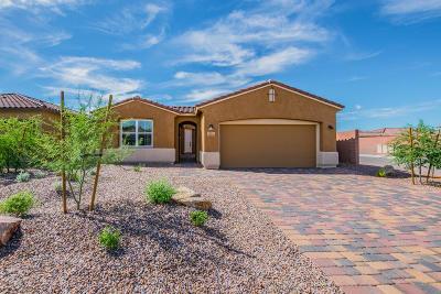 Marana Single Family Home For Sale: 14111 N Silverleaf Lane N