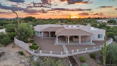 Pima County, Pinal County Single Family Home For Sale: 9610 N Camino Del Plata