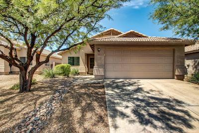 Pima County, Pinal County Single Family Home For Sale: 6342 S Wheaton Drive