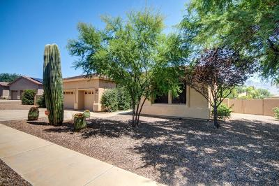 Oro Valley Single Family Home Active Contingent: 11732 N Desert Holly Drive