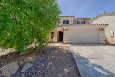 Sahuarita Single Family Home For Sale: 403 W Vuelta Friso