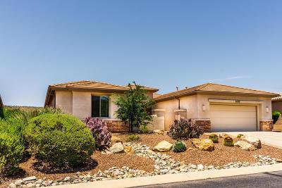 Saddlebrooke Single Family Home For Sale: 65152 E Rocky Mesa Drive