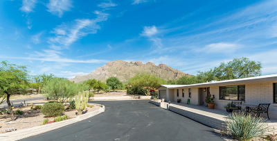 Oro Valley Single Family Home Active Contingent: 131 W Rolling Hills Street