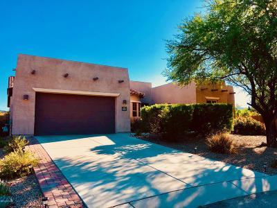 Vail Single Family Home For Sale: 9497 S Camino Cabalgata