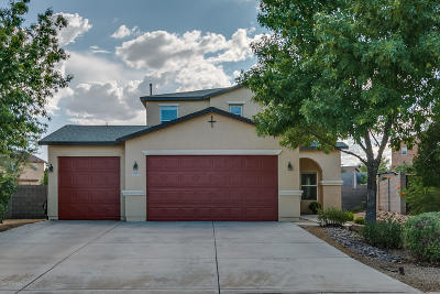 Sahuarita Single Family Home For Sale: 1085 W Camino Fijo