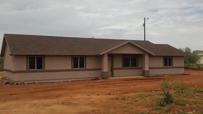 Rio Rico Single Family Home For Sale: 1700 Camino Jalisco