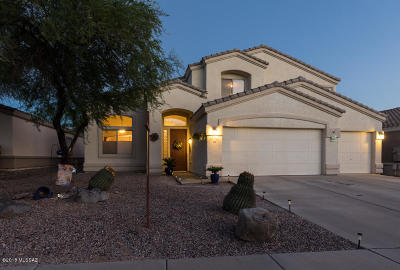 Oro Valley Single Family Home For Sale: 315 W Klinger Canyon Drive