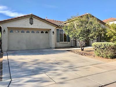 Single Family Home For Sale: 4775 E Silverpuffs Way