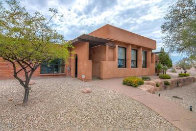 Tucson Single Family Home For Sale: 3902 N Pantano Road